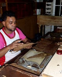 One Man Cigar Factory in Puerto Plata
