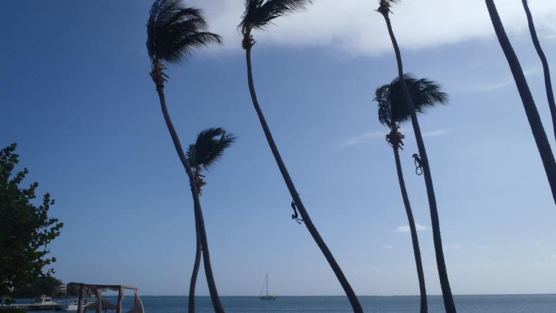 Jubilee off Copamarina Resort - 2 - resize